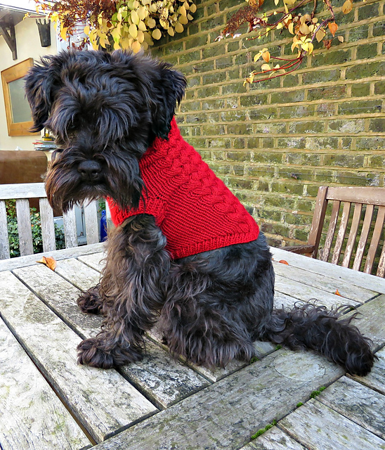 Knitting Patterns Galore Dog Jumper