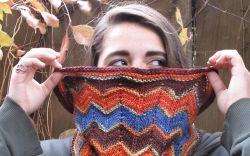 Autumn Chevron Cowl