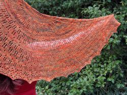 Feathered Shawl