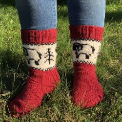 Forest Sheep Socks