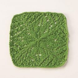 Candleberry Dishcloth