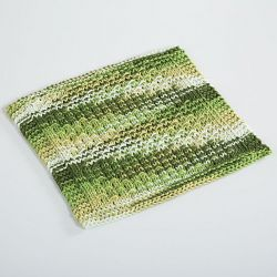 Cryptodira Dishcloth