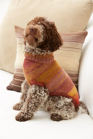 Knitting Patterns Galore Proud Puppy Dog Sweater