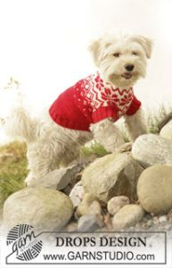 Knitted Dog Coat
