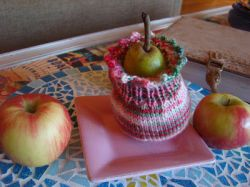 Pear Apple Cozy