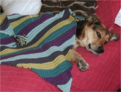 Sandy's Diagonal Baby Blanket