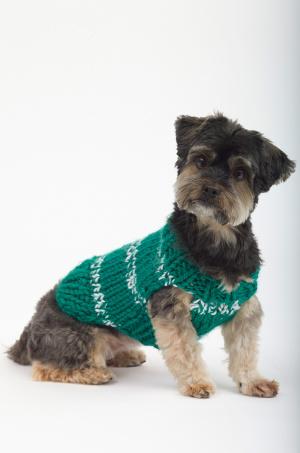 Knitting Patterns Galore The Sports Nut Dog Sweater