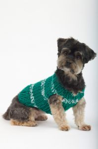The Sports Nut Dog Sweater