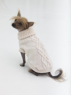 Knitting Patterns Galore The Prep Dog Sweater